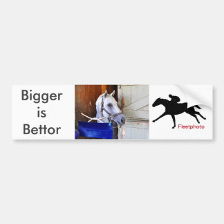 Bigger is Bettor Bumper Sticker