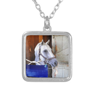 Bigger is Bettor Silver Plated Necklace