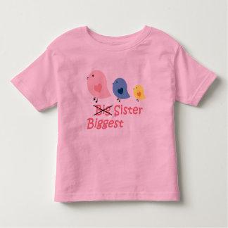 Biggest Sister Toddler T-shirt