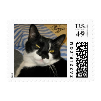 Biggie - Adopted Shelter Cat Postage Stamp