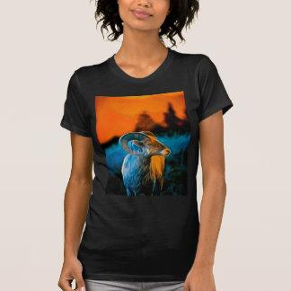 Bighorn at sunset T-Shirt