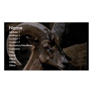 Bighorn del desierto tarjetas de visita