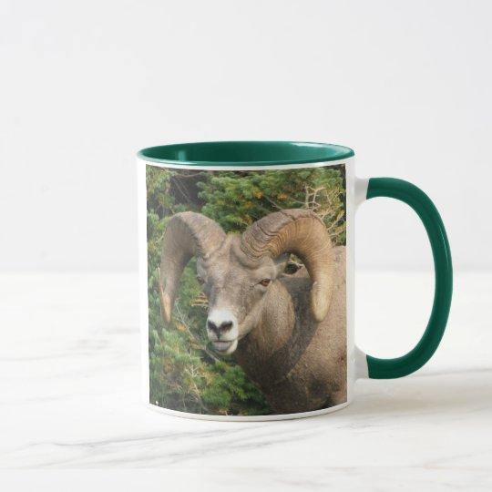 Bighorn Mug