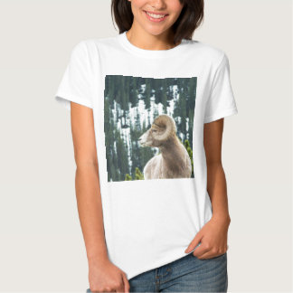 Bighorn sheep and trees t shirt