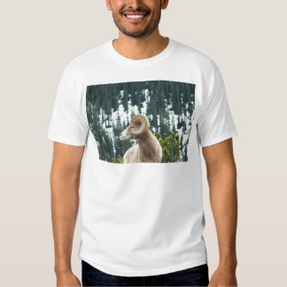 Bighorn sheep and trees t-shirt