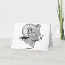Bighorn Sheep Card