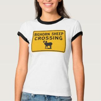 Bighorn Sheep Crossing, Washington, USA T-Shirt