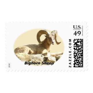 Bighorn Sheep in Light Postage
