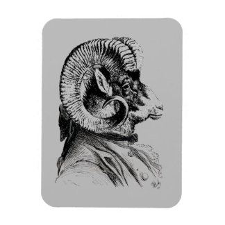 Bighorn Sheep In Suit Magnet