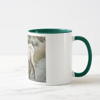 Bighorn Sheep in the Mountains Mug