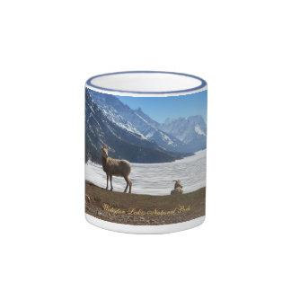 Bighorn Sheep in Waterton Coffee Mugs