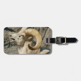 Bighorn Sheep Laughing Photo Luggage Tag