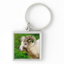 Bighorn Sheep - Male with Big Horns Keychain
