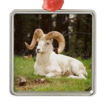 Bighorn Sheep Metal Ornament