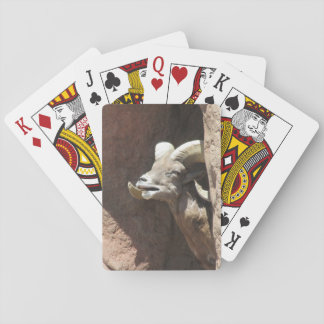Bighorn Sheep Poker Deck