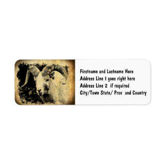 Bighorn Sheep with Attitude Label
