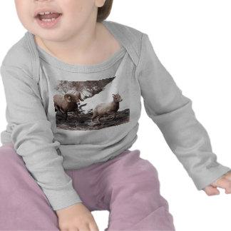 Bighorn Sheeps T Shirts