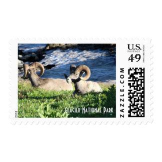 Bighorns of Glacier Postage Stamp