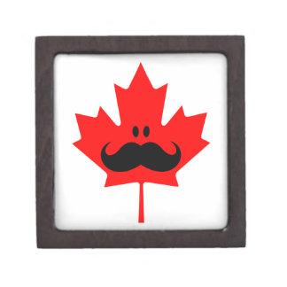 Bigote de Canadá - un bigote en arce rojo Caja De Regalo De Calidad