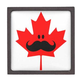 Bigote de Canadá - un bigote en arce rojo Cajas De Recuerdo De Calidad