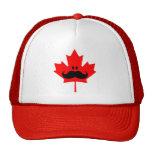 Bigote de Canadá - un bigote en arce rojo Gorro