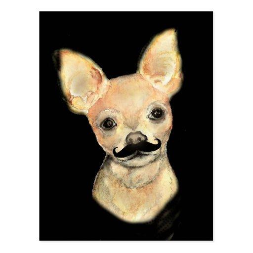 Bigote en un humor lindo del perro postales