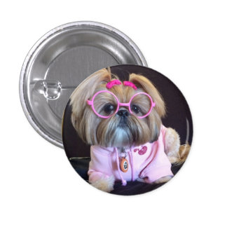 Bijou the fashion diva Shih Tzu Pinback Button