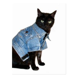biker kitty postcards