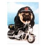 Biker Pug Dog Post Cards