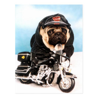 Biker Pug Dog Post Cards