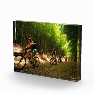 Biking in bamboo trail award