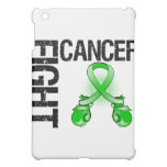 Bile Duct Cancer Fight Boxing Gloves iPad Mini Covers