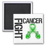 Bile Duct Cancer Fight Boxing Gloves Fridge Magnets