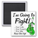 Bile Duct Cancer I am Going To Fight Magnets