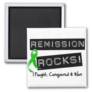 Bile Duct Cancer Remission Rocks 2 Inch Square Magnet