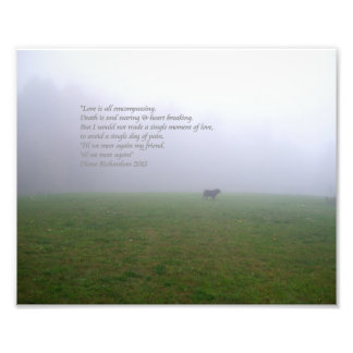 Bill In The Fog, an ode to departed canine friends Photo Print