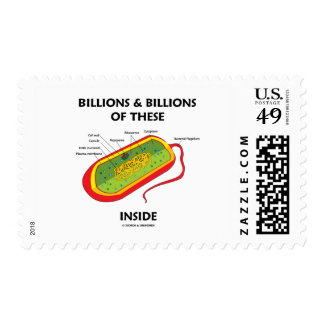 Billions And Billions Of These (Prokaryote) Inside Postage