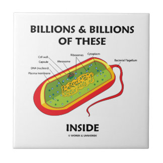 Billions And Billions Of These (Prokaryote) Inside Tile