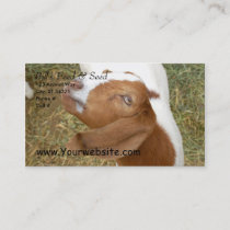 Bill's Feed & Seed Business Card