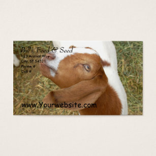 Seed business cards templates zazzle bills feed seed business card colourmoves