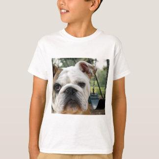 Billy Bully T-Tales T-shirt