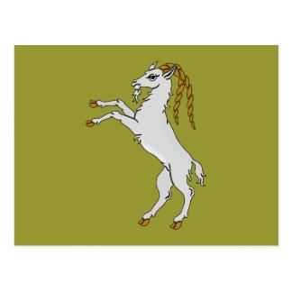 Billy caballete de cabra goat postales