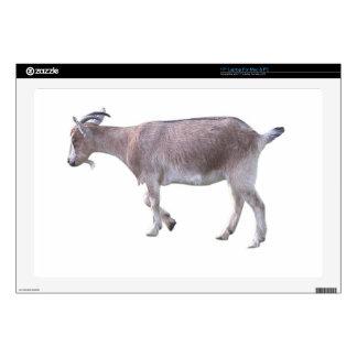 "Billy Goat 17"" Laptop Skins"