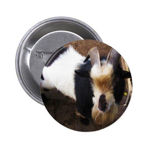 Billy Goat 2 Inch Round Button