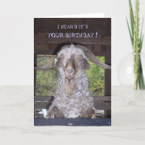 BILLY GOAT BIRTHDAY CARD