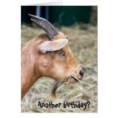 Goat princess happy birthday card zazzle bookmarktalkfo Image collections