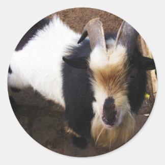 Billy Goat Classic Round Sticker