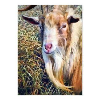 Billy Goat Closeup Card