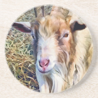 Billy Goat Closeup Beverage Coaster