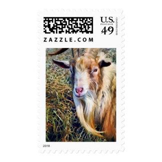 Billy Goat Closeup Stamp